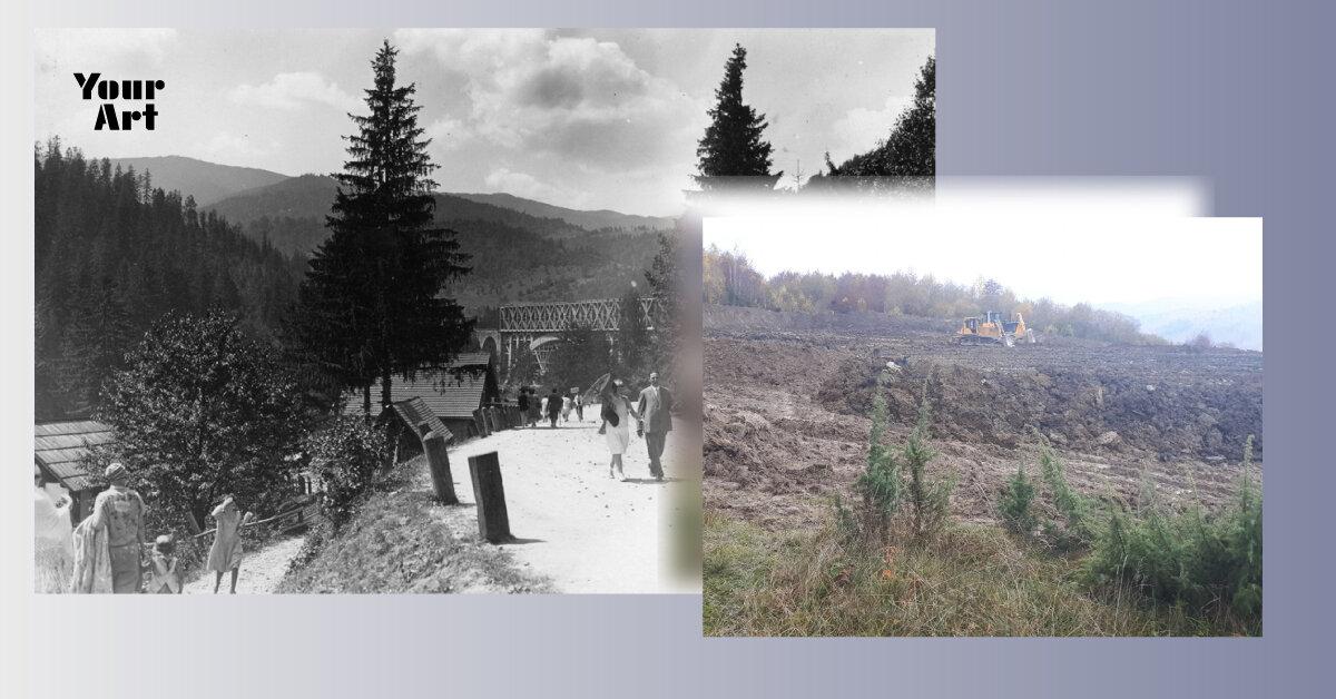 Нафтогаз почав вирубку лісів, щоб знайти газ на Закарпатті